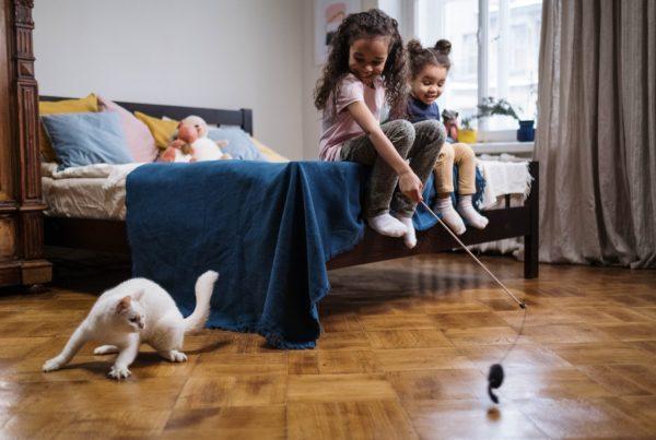 enfants en sécurité avec des animaux de compagnie